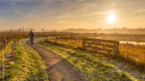 Obraz Walking track in misty agricultural polder - fototapety do salonu