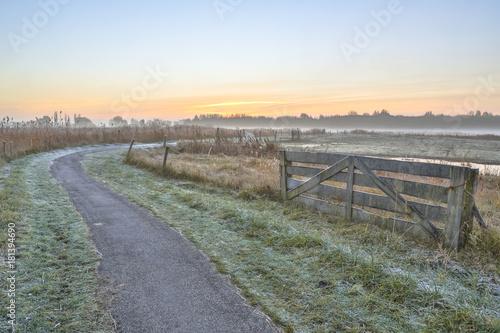 Fotobehang Grijs Misty agricultural polder landscape