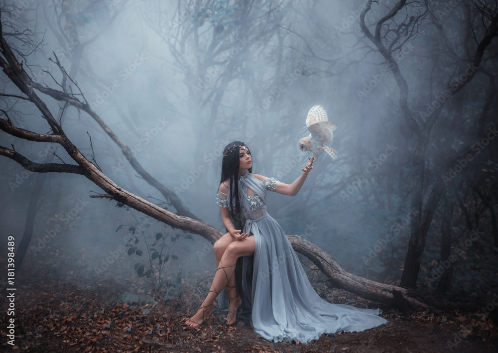 Fototapeta Mysterious sorceress in a beautiful blue dress. The background is a cold forest in the fog. Girl with a white owl. Artistic Photography