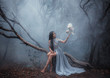 canvas print picture - Mysterious sorceress in a beautiful blue dress. The background is a cold forest in the fog. Girl with a white owl. Artistic Photography