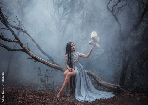 Fototapeta  Mysterious sorceress in a beautiful blue dress