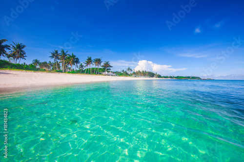 Spoed Foto op Canvas Eiland beach and tropical sea