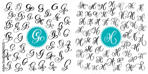 Set Letter G And H Hand Drawn Vector Flourish Calligraphy Script Font Isolated