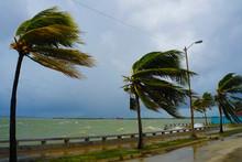 Cienfuegos During Hurrican Irma