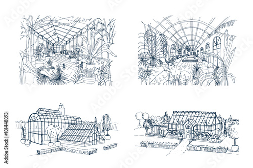 Bundle of freehand drawings of greenhouses full of jungle ...