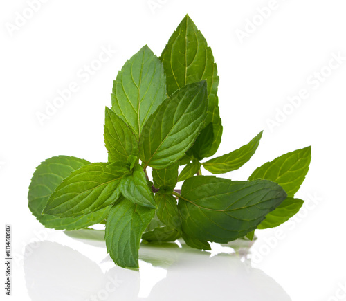 Valokuva a bunch of fresh peppermint on a white background