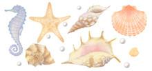 Set Of Watercolor Sea Elements...