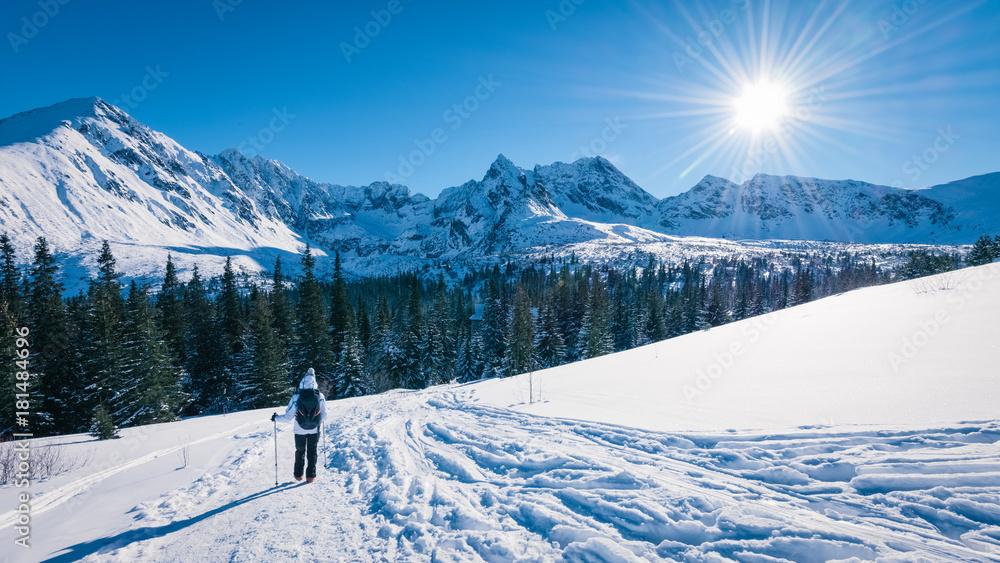 Fototapety, obrazy: Tourist going to Hala Gasienicowa, Tatra mountans, Poland