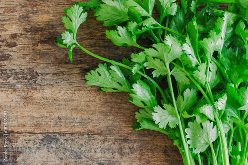 Fototapeta Green leaves coriander lay on wood table in top view flat lay with copy space. Food preparation concept for fresh vegetable. obraz