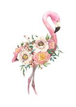 Exotic Bright Bird Flamingo With Blooming Flowers. Isolated Decorative Element. Watercolor Bird Concept. Tropical Concept. Flower Concept