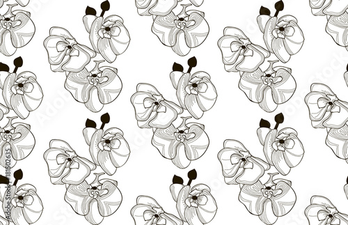 Photo Stands Baby room Vector Black Seamless Pattern with Drawn Orchid Flowers