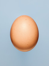 Egg Lit From Above