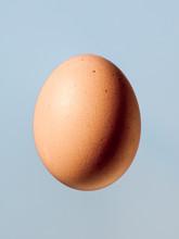 Egg Lit Sideways