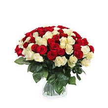 Bright Roses Bouquet On White