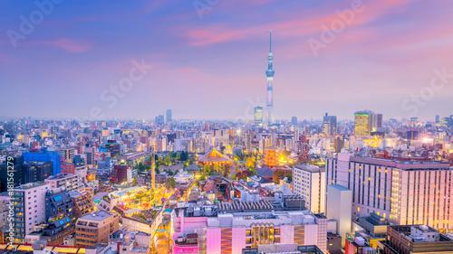 Spoed Foto op Canvas Tokyo Panorama shot of Tokyo city skyline