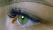 Eyes. Green eyes with blue eyelashes