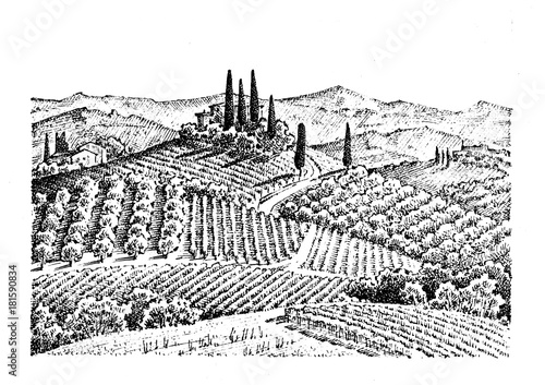 Deurstickers Wit rustic vineyard. rural landscape with houses. solar tuscany background. fields and cypress trees. harvesting and haystacks. engraved hand drawn in old sketch and vintage style for label.
