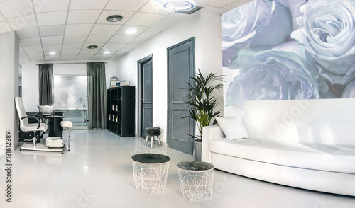 Reception of a bright beauty salon with sofa, table and ...