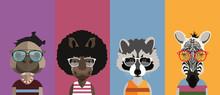 Hippo, Rhino, Raccoon And Zebra