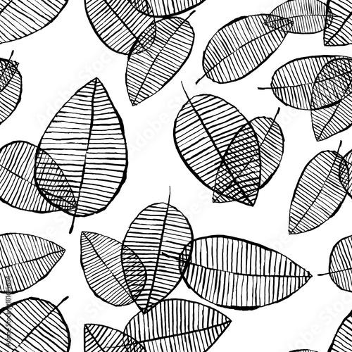 liscie-z-drzewa-czarno-biale