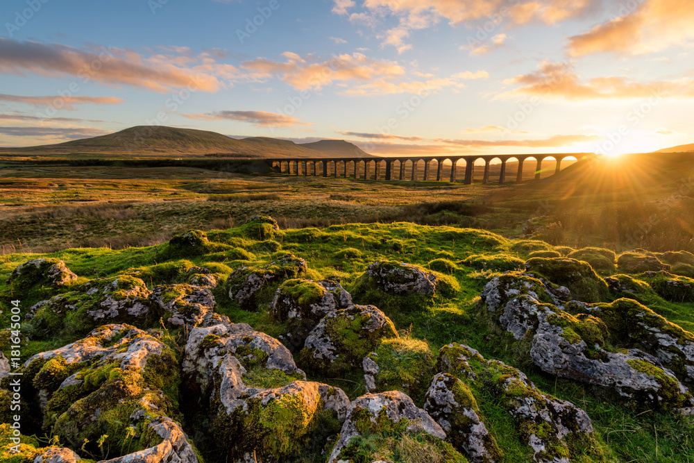 Fototapety, obrazy: Gorgeous golden light as the sun sets behind the Ribblehead Viaduct with rocks in foreground.