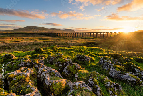 Wall Murals Northern Europe Gorgeous golden light as the sun sets behind the Ribblehead Viaduct with rocks in foreground.