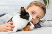 Cute Boy With Funny Guinea Pig And Rabbit, Indoors
