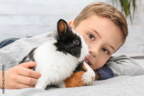 Fotografía  Cute boy with funny guinea pig and rabbit, indoors
