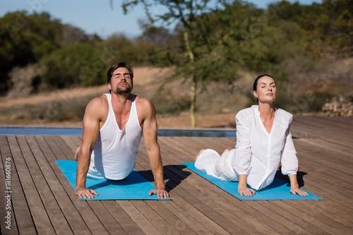 Couple performing yoga at safari vacation Poster