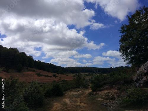 Staande foto Grijze traf. Paseo por la Sierra 2