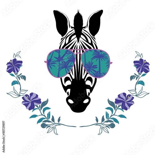 chlodna-zebra-w-slonce-szkiel-wektoru-ilustraci