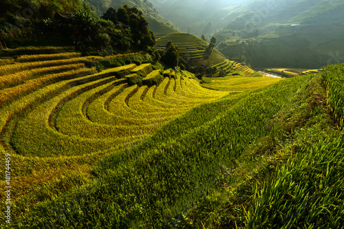 Photo sur Toile Les champs de riz Bright morning riceterraces in Mu cang chai,Yenbai,Vietnam.