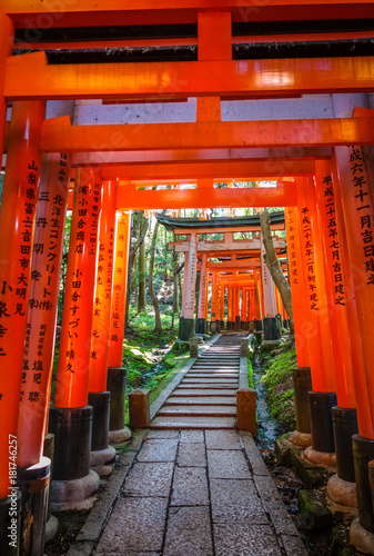 Photo sur Toile Japon Fushimi Inari Taisha torii, Kyoto, Japan