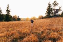 Traveler In Golden Fields