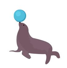 Sea Lion With A Ball, Circus I...