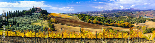 Wall Murals Vineyard Traditional countryside and landscapes of beautiful Tuscany. Castles and vineyards. Italy