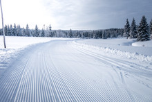 Winter Mountain Landscape With Cross Country Skiing Trails, Jeseniky Mountains, Czech Republic
