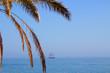 Ship. Yacht in the Mediterranean sea. Costa del Sol, Spain.