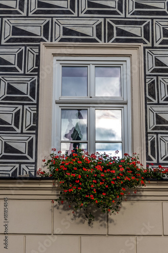 black and white sgraffito in Kraków Poland