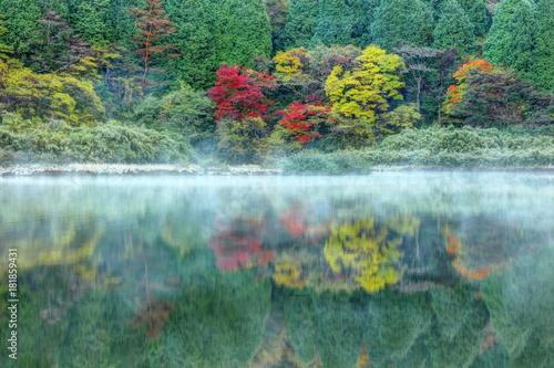Fototapety, obrazy: 箱根お玉ヶ池の夜明け
