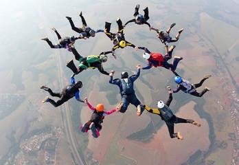 Fototapeta Skydiving team wotk