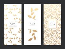 Branding Packageing Leaf Nature Background, Logo Banner Voucher, Gold Leaves Ornaments, Vector Illustration