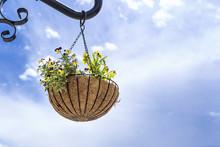 Hanging Flower Basket Against ...