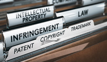 Intellectual Property Rights, ...
