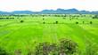 Leinwanddruck Bild - Field and mountain