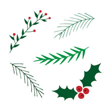 Hand Drawn Christmas Set. Mistletoe And Leavy Branches Vector Illustrations. Conifer Tree Branches.