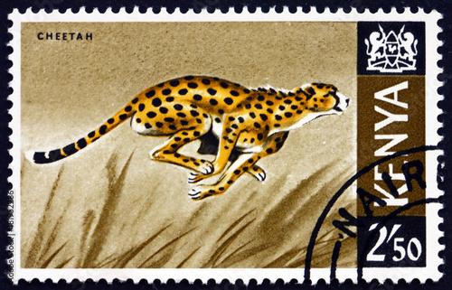 Postage stamp Kenya 1966 cheetah, acinonyx jubatus, animal