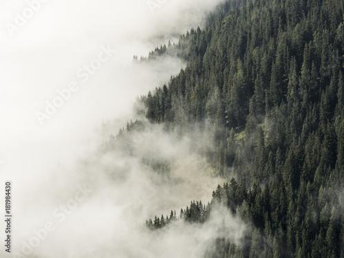 mgla-na-alpejskiej-gorskiej-druzce