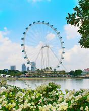 Beautiful Singapore Flyer