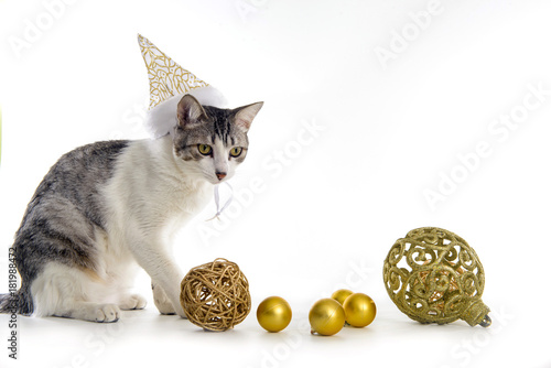 Cute Cat Wearing Hat And Playing With Christmas Balls On